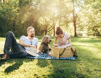 Couple on a picnic with their dog
