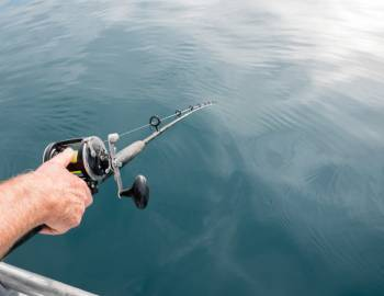fishing pole in water on charter