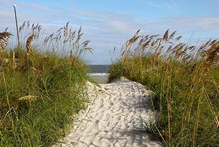 Pathway to the beach at Hilton Head